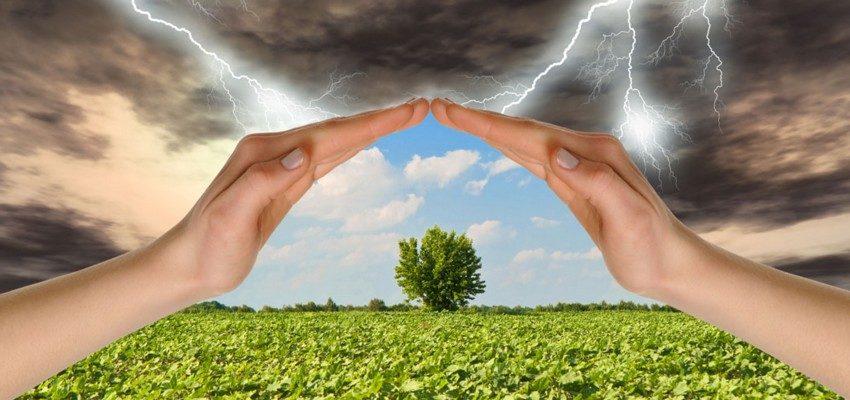 Как обрести метеосвободу