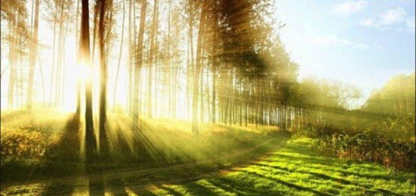 Существование — это и есть благоприятная возможность; быть — вот благоприятная возможность